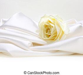 バラ, 白, 絹, 背景