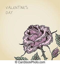 バラ, 花, カード, バレンタイン