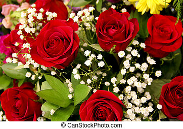 バラ, 花, 背景