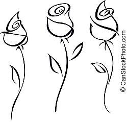 バラ, 花, 隔離された, 白, バックグラウンド。, ベクトル, illustration.