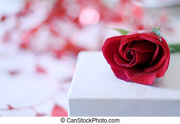 バラ, 贈り物