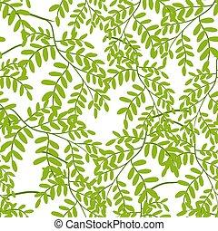 パターン, アカシア, seamless, leaves.