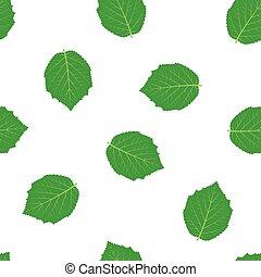 パターン, 隔離された, ハシバミ, 白, 葉