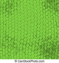 パターン, iguana, 皮膚