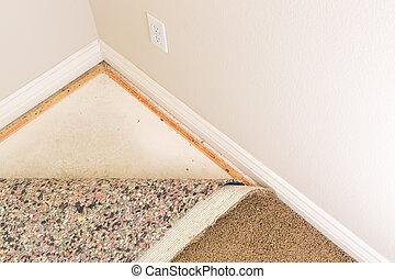 パッディング, カーペット, 引っ張られる, 部屋, 背中