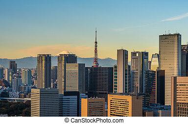 パノラマである, 東京, 空中写真