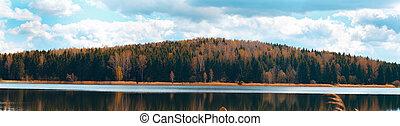 パノラマ, の, 秋の森林, 上に, a, よく晴れた日