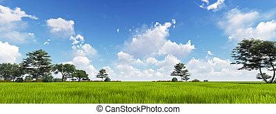 パノラマ, の, 緑の草, ∥で∥, 雲