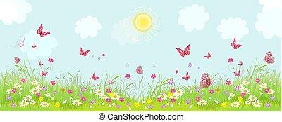 パノラマ, 花が咲く, 花, 日当たりが良い, 牧草地