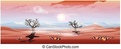 パノラマ, 高地, 砂漠