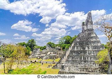 パノラマ, maya, 寺院, tikal, 台なし