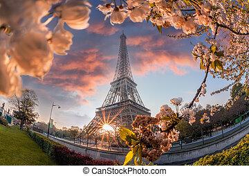 パリ, フランス, タワー, 春, エッフェル, の間, 時間
