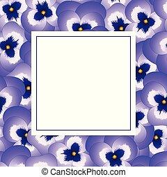 パンジー, 花, 旗, カード, すみれ