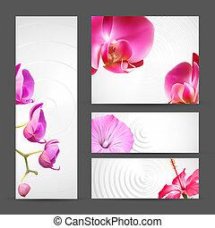 パンフレット, 花, テンプレート, 蘭