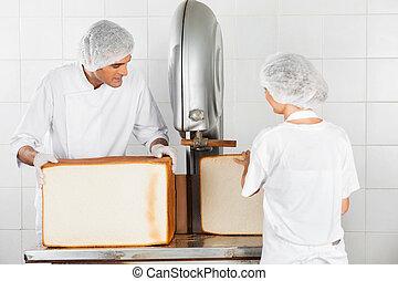 パン屋, 使うこと, 打抜き機, 中に, パン屋