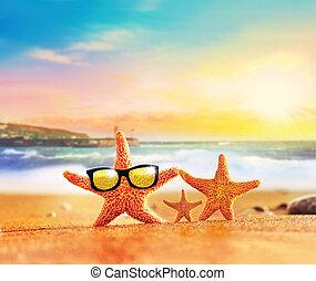 ヒトデ, seashore., 夏, 家族, サングラス, 浜。