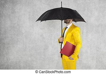 ビジネスマン, 傘, ブリーフケース, 下に