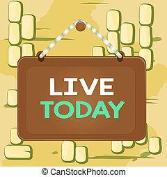 ビジネス, 費やしなさい, 板, panel., 生活, today., 瞬間, 執筆, 生きている, しまのある, 長方形, 有色人種, 固定, テキスト, あなた, フレーム, 概念, 何か, 単語, ひも, ほしい, プレゼント, あなたの, 背景, 釘