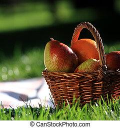 ピクニック, まだ生命