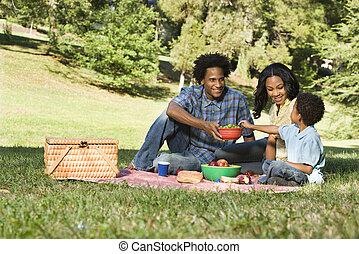 ピクニック, 中に, park.