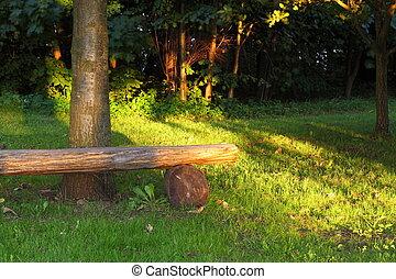 ピクニック, 場所