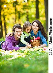 ピクニック, 持つこと, 家族