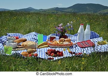 ピクニック, 牧草地