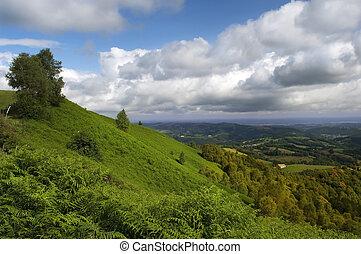 ピレネー山脈, 斜面, 緑, フランス語