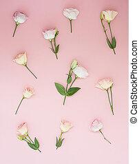 ピンクの花, パターン, 上に, パステル, ピンク, バックグラウンド。, 平ら, 位置, 上, ビュー。