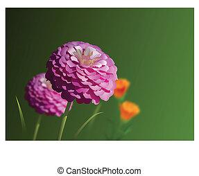 ピンクの花, 庭