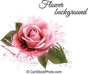 ピンクの花, rose., 背景, vector.