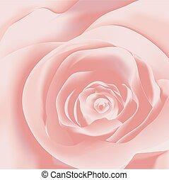 ピンクは 上がった, クローズアップ, 背景, 光景