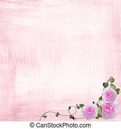 ピンクは 上がった, ボーダー
