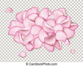 ピンクは 上がった, 花弁