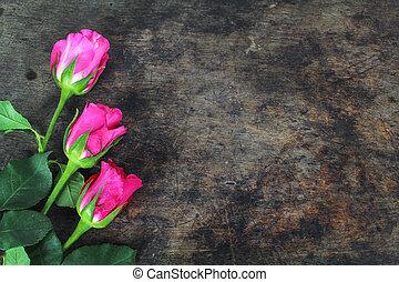 ピンクは 上がった, 花, 背景