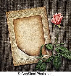 ピンク, お祝い, バラ, 招待, ∥あるいは∥, カード
