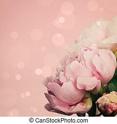ピンク, シャクヤク, 上に, パステル背景
