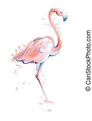 ピンク, スケッチ, フラミンゴ, イラスト, ベクトル, 背景, 白
