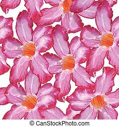 ピンク, スケッチ, flower., バラ, pattern., seamless, 背景, 白, 砂漠