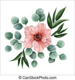 ピンク, ユーカリ, 花, illustration., ruscus., 水彩画, 葉, 囲まれた, アネモネ, ベクトル, design., 植物, イタリア語