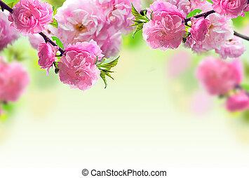 ピンク, 抽象的, 花, デザイン