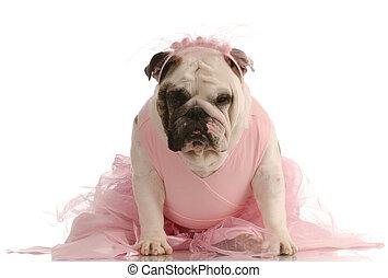 ピンク, 服を着せられる, チュチュ, 犬