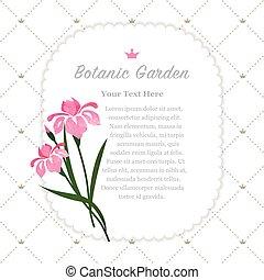 ピンク, 植物園, カラフルである, 自然, メモ, 手ざわり, 水彩画, ベクトル, アイリス, フレーム