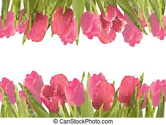 ピンク, 美しい, illustration., flowers., ベクトル, 背景, 休日