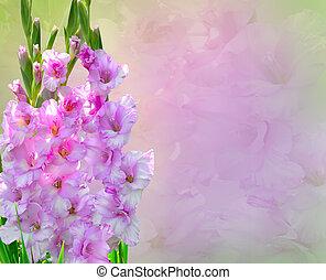ピンク, 花束, 花, グラジオラス