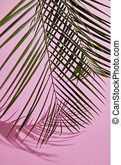 ピンク, 葉, 緑の背景