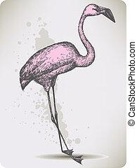 ピンク, 鳥, フラミンゴ, illustration., ベクトル, hand-drawing.