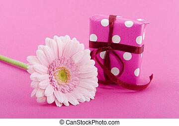 ピンク, birthday