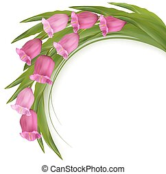 ピンク, flowers., vector., 背景, 祝福