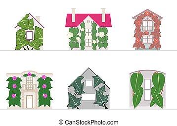 ファサド, gradients, システム, いいえ, 緑の壁